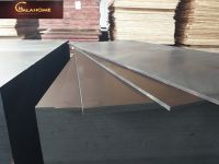 Film face plywood for construction (GalaHome)