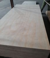Commercial Plywood Pine veneer face and back