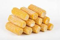 FROZEN SWEET CORN-FOOD CANNED