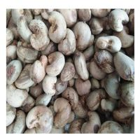 Cheap Raw Cashew Nut/ Cashew Nuts W180 W240 W320 W450/ Ghana Certified WW320 Dried Cashew