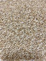 Sell offer on White Sesame Seeds