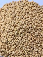 Selling offer for Soybeans