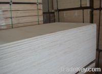 Sell full poplar plywood