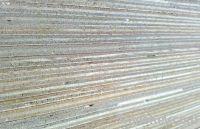 Sell full hardwood plywood