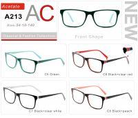 Acetate Eyeglasses Frames A213-2