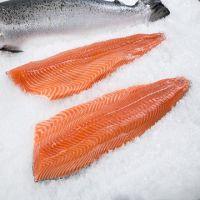 Buy Fresh and Frozen Atlantic Salmon Fish/Whole frozen salmon/Salmon Head