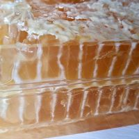 Natural Raw Comb Honey in Box