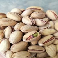 Wholesale price RAW pistachio nuts
