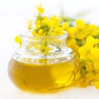New Best Selling Rapeseed Oil/ Canola Oil.