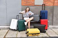 8 wheel PP luggage