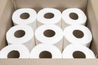 2020 High Quality toilet paper / toilet tissue / paper toilet