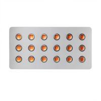 900W COB LED Grow Light
