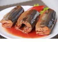Canned Mackerel Fish In Tomato Sauce and Vegetable Oil