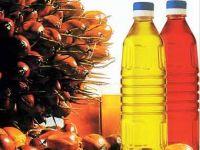 PALM OIL RBD PALM OLEIN CP10, CP8, CP6/ Palm Oil 100% Refined and Crude