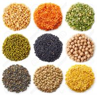 Lentils(Red, Green, Brown, Yellow, Black)