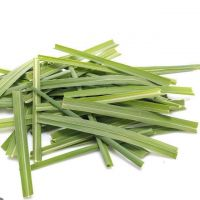 FRESH, FROZEN & DRIED LEMONGRASS WITH BEST PRICE AND HIGH QUALITY