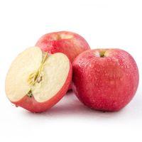 Fresh Fruit  gala apple