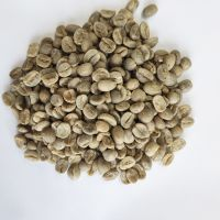 South African  grade A Coffee beans with Wholesale Arabica Green Coffee Beans