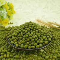 high quality  dried mung bean