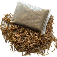 high protein dried mealworm poultry feed