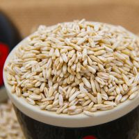 High quality oats nutrition wholesale price oats export naked oats
