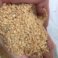 cheapest floating fish feed
