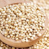 top quality Quinoa grains / Top Quality high protein Black Quinoa