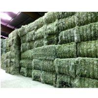 Mixed hay / Timothy hay / Alfalfa Hay