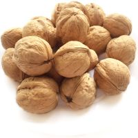 Walnuts inshell for sale