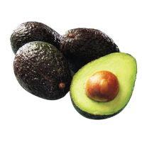 AVOCADO FRESH AVOCADO HASS AND FUERTE, Fresh Furte & Hass Avocados