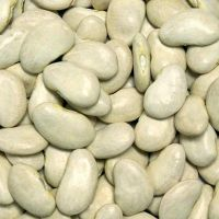 Dried lima Beans, Haricot Beans, Kidney Beans