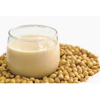 High Protein Organic instant soy milk powder soya milk