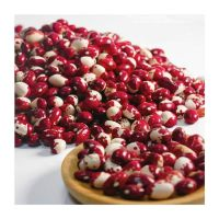 High Quality Colour Sorting Dehydration Kidney Bean