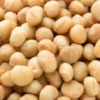 100% best quality macademia nuts