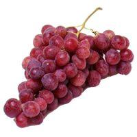 100% Premium quality Fresh Grapes