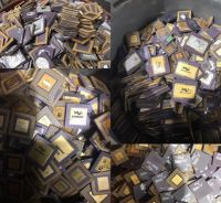 CPU SCRAP WITH GOLD PINS CHEAP PRICE
