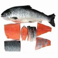 Atlantic Salmon Heads, Salmon Bellies and Pacific Salmon Fish