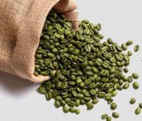 Ethiopian Arabica Coffee Beans- Harar