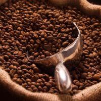 Robusta Coffee/Arabica Green Coffee Beans