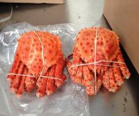 Red King Crab, Wholesale, Frozen Red King Crab