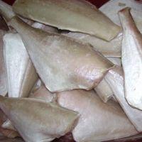 Leather Jacket Fish, Frozen Leather Jacket Fish, Dried Leather Jacket Fish