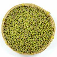 Premium Grade Green Mung Beans