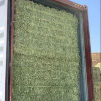 Sell Lucerne Hay, Alfalfa Hay Bale, Clover from Sweden