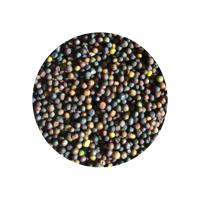 Top Quality Sesame Rape Seed