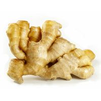 High Quality  Yellow Ginger