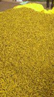 Tumeric Roots & Powder (Curcumin)