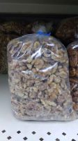 High Quality Dried Hazel Nuts