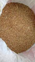 Natural High quality wheat grain