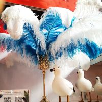 wholesale feather suppliers 30-32 inch Ostrich Femina Feathers Decoration For Carnival Ostrich Plumes Feather Wedding