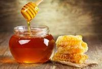 Home Products Agriculture Animal husbandry Honey & Honey Products